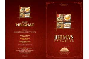 Siddhi Creations Creative Graphic Designing Printing Packaging